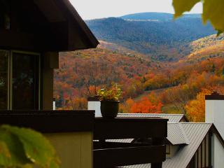 Chalet in Coolidge Falls - Lincoln vacation rentals