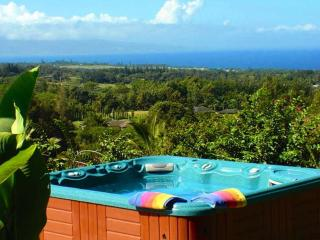 Maui Tradewinds Honeymoon/Vacation Suite - Maui vacation rentals