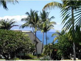 Oceanviews from the front lanai - Newly Remodeled 1 BR Oceanview  Maui Kamaole condo - Kihei - rentals