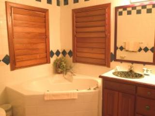 2 bedroom Apartment with A/C in San Pedro - San Pedro vacation rentals