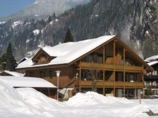 Jungfrau holiday apartment Ski and Summer. - Lauterbrunnen vacation rentals
