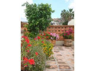 Nice House with Deck and Internet Access - San Miguel de Allende vacation rentals
