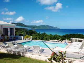 Villa Dawn most popular on St. Croix for 15 years! - Christiansted vacation rentals
