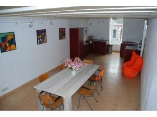 2 BEDROOM -Sleeps 6- DUPLEX APARTMENT ROOFTERRACE - Assendelft vacation rentals