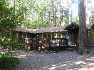 "Charming ""Twain Harte Original"" cabin- deck, kitchen, BBQ, handicap access - Twain Harte vacation rentals"