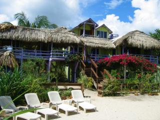 Casa Beya: private Oceanfront  BEACHhouse w/ dock&wifi - Placencia vacation rentals