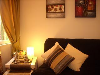 living room /sofabed - Luxury  sweet home : LAST MINUTE !! - Rome - rentals