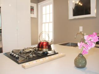 Luxury One Bedroom Apartment in Best Location - 2 blocks to metro - District of Columbia vacation rentals