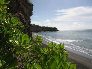 Black Sand Cove beach accessible only from the stairs on our property - SECLUSION IN NATURE, ON A NEVIS COVE - Charlestown - rentals