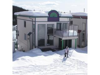 Ski-in/Ski-out - 4bdr/3bath - Silver Star Resort - Lumby vacation rentals