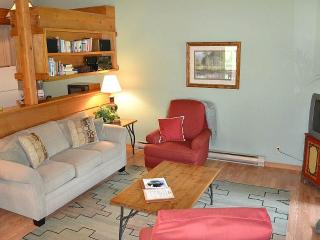 Chokeberry 3824 - Wilson vacation rentals