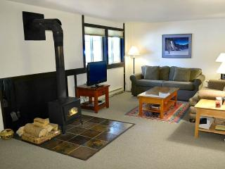 Gros Ventre B3 - Teton Village vacation rentals