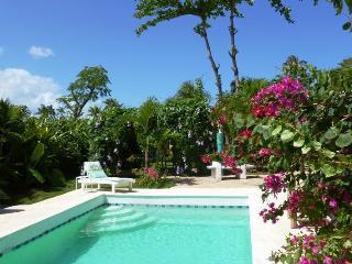 Walk to Beach!- Private Swim Pool-Honeymoon Villa - Las Terrenas vacation rentals