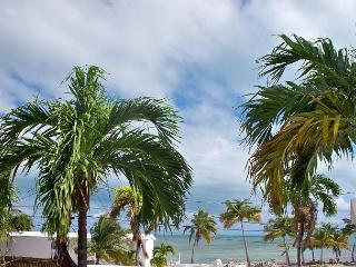 30 night minimum stay requirement.  Manatee Manor - Key West vacation rentals