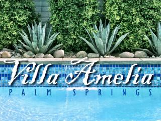 Villa Amelia w/Private Pool & Spa - See DISCOUNTS! - Palm Springs vacation rentals