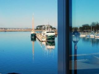 Luxurious Waterfront Condominiums - Eureka vacation rentals