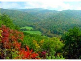 Breathtaking Valley and Mountain View of Rich Mountain and National Forest lands!! - Breathtaking Valley & Mountain Views, Huge Deck! - Blue Ridge - rentals