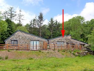 BUZZARD COTTAGE, pet friendly, country holiday cottage, with a garden in Dolgellau, Ref 2506 - Dolgellau vacation rentals