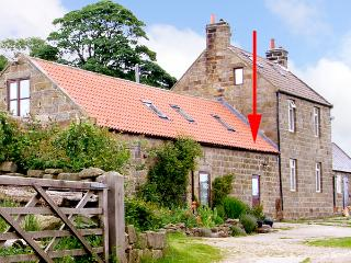 DAFFODIL COTTAGE, pet friendly, character holiday cottage, with a woodburner and garden in Danby, Ref 1575 - Danby vacation rentals