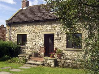 DAIRY HOUSE, pet friendly, character holiday cottage, with a garden in Newton Upon Rawcliffe, Ref 67 - Levisham vacation rentals