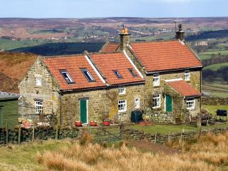 ST. HELENA COTTAGE, pet friendly, country holiday cottage, with a garden in Castleton, Ref 1712 - Castleton vacation rentals