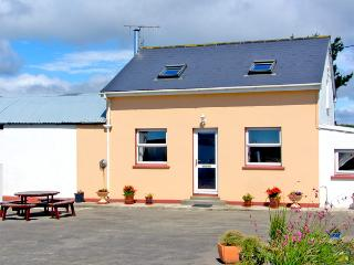 OCEAN VIEW, pet friendly, country holiday cottage, with a garden in Skibbereen, County Cork, Ref 2519 - Skibbereen vacation rentals