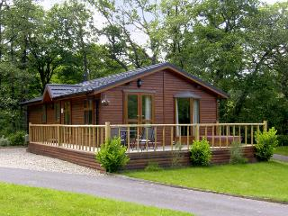 THE WILLOWS, family friendly, luxury holiday cottage, with hot tub in Narberth, Ref 3587 - Pembrokeshire vacation rentals
