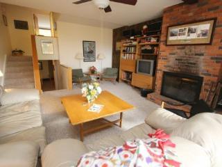 Nice 3 bedroom House in Stowe - Stowe vacation rentals