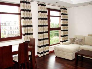 Bright, Spacious Living Room - Executive Apartment in the Heart of Gdansk - Gdansk - rentals