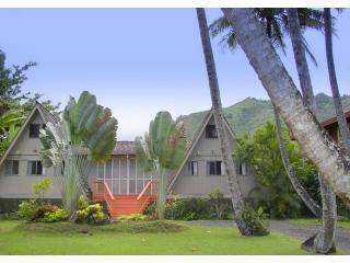 Hale Lani in Ha'ena - Haena Spectacular View Home  Walk to Tunnels Beach - Haena - rentals