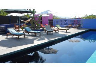 Modern Hacienda. Private garden. Saltwater Pool. - Todos Santos vacation rentals