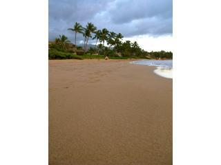 Top Rated, Special Rate Sept/Oct, Ocean Vu - Kihei vacation rentals