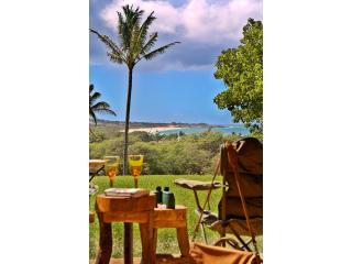 Sunny Condo with Internet Access and Dishwasher - Maunaloa vacation rentals