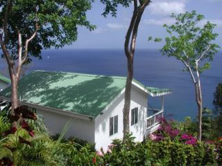 Avocado Cottage & the Caribbean Sea. - NATURE'S PARADISE: Amazing Views & Paradise Pool! - Marigot Bay - rentals