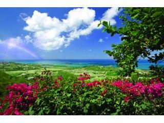 Villa des Great Chefs - Beautiful and private! - Christiansted vacation rentals