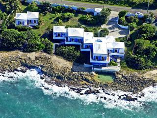 Aerial view of Sea View Play and natural coral pool - SEAVIEWPLAY  Ocean Front Luxury Villa - Saint Croix - rentals