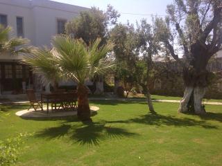 Exclusive Luxury Home - VILLA SATSUMA - Bodrum vacation rentals