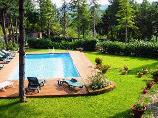 110+ REVIEWS on TRIPADVISOR... 2 GITS x BOOKING - Florence vacation rentals