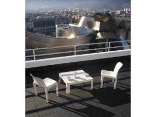P1010207.JPG - Exclusive Apartment Bilbao Guggenheim - Abadino - rentals