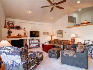3 BR/ 2.5 BA warm and inviting vacation home, sleeps 9, private hot tub, pet friendly - Silverthorne vacation rentals