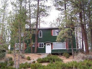 Forest Walk Cabin - Big Bear and Inland Empire vacation rentals
