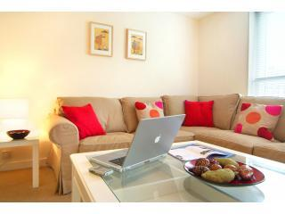 Very spacious relaxing lounge area - Two bedroom city flat with parking - Edinburgh - rentals