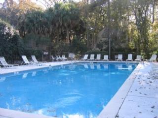 Pool - 21 Night Heron - Hilton Head - rentals