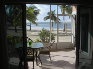 patio view - Beachfront,Step from Your Porch Onto the Sand - Grand Cayman - rentals