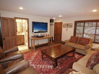 Fasching Haus Unit 250 - Basalt vacation rentals