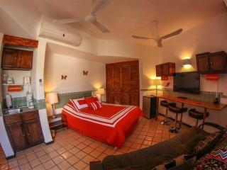 Cabo Marina Beach Condos  $50 PP May-Oct - Cabo San Lucas vacation rentals