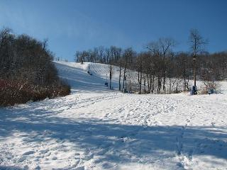 Incredible 3 Bedroom ski in/ ski out townhome w/ hot tub! - McHenry vacation rentals