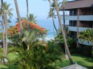 Ocean View from Lanai - 70 steps to Boogie Board and Snorkeling 2BR/2BA - Kailua-Kona - rentals