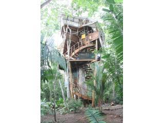 MAR SPECIAL UltimateTreehouse/Southern Costa Rica - Osa Peninsula vacation rentals