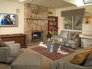 Luxury Townhouse in the Heart of Aspen - Aspen vacation rentals